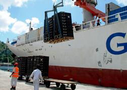 Banana Shipment