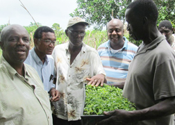 Ndp Visits Nw Farmers 2